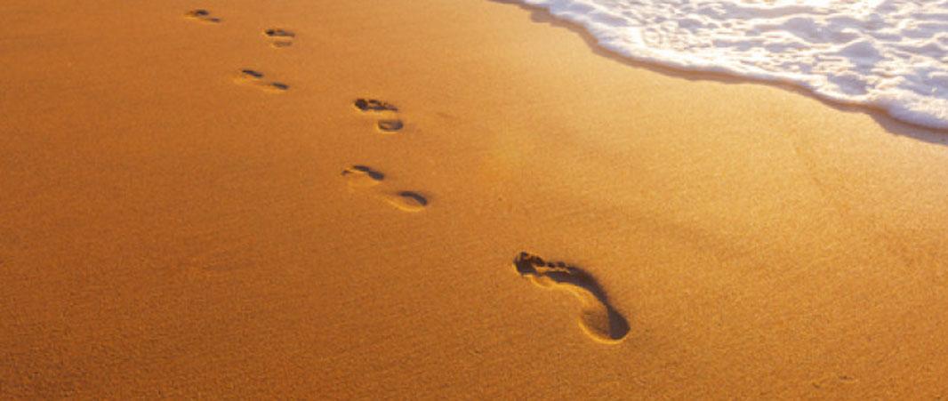 Utilisations des footprints pour son netlinking