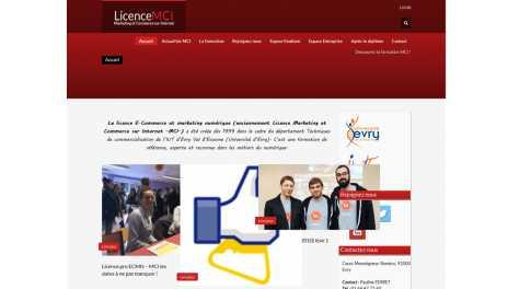 Licence Mci – Marketing et Commerce Sur Internet