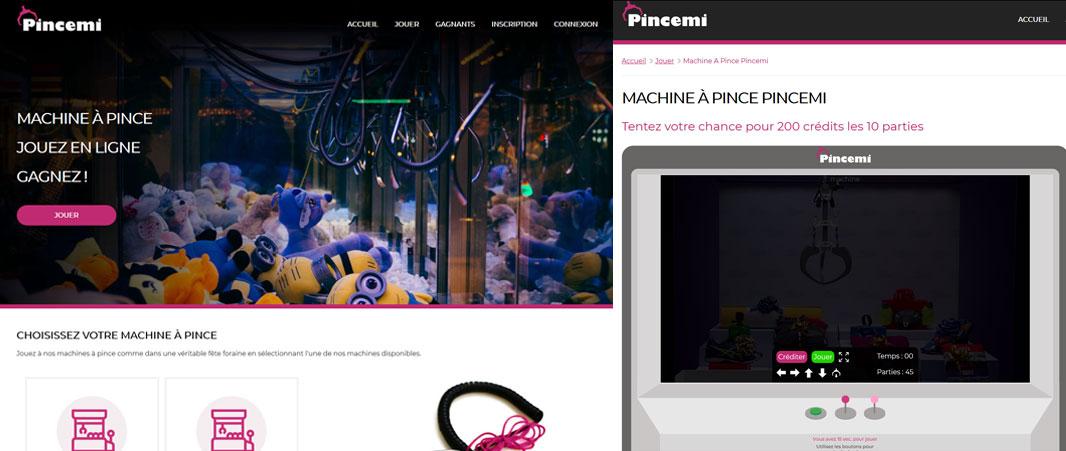 Site Internet Pincemi